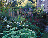 MAYROYD MILL HOUSE, Yorkshire: DESIGNERS: RICHARD EASTON AND Steve MACKAY - THE MILL with BORDER of Echinacea White SWAN, SEDUM AND Digitalis FERRUGINEA