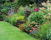 HALL Farm, Lincolnshire: HERBACEOUS BORDER with DAHLIA AND Achillea