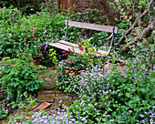 LISETTE PLEASANCE Garden, London: Cottage STYLE PLANTING - WOODEN BENCH with EUPHORBIA AND Forget-Me-Nots