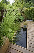 KATHY TAYLORS Garden, London: Pool / POND IN THE BACK Garden with WOODEN DECKING / WALKWAY