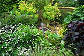 HUNMANBY Grange,Yorks: STONE Water Feature with EUPHORBIA STYGIANA, EUPHORBIA MELLIFERA, Primula HYBRIDS & LIGULARIA 'BRITT MARIE CRAWFORD' AND RANUNCULUS ACONITIFOLIUM FLORE PLENA