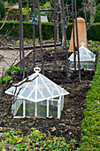 WOODPECKERS, WARWICKSHIRE, Winter: Old FASHIONED CLOCHES IN THE VEGETABLE Garden IN Winter