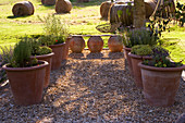 Designer Clare MATTHEWS: Devon GARDEN. Herb GRAVEL Garden: OUTDOOR SEATING AREA with WOODEN BENCH AND GRAVEL AREA with HERBS IN LARGE TERRACOTTA CONTAINERS