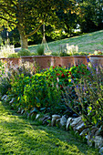 Designer Clare MATTHEWS: Devon GARDEN. Herb BORDER with Tropaeolum AND TERRACOTTA CONTAINERS Behind PLANED with HERBS