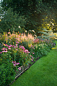PETTIFERS Garden, OXFORDSHIRE. DAWN Light On LAWN AND BORDER IN LATE SUMMER with Echinacea