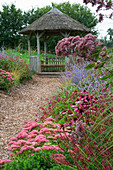 Lady Farm, Somerset: Designer, JUDY PEARCE - New PERENNIAL BORDER VIEW TO Thatched SEAT with PEROVSKIA Blue SPIRE, Echinacea RUBINSTERN, SEDUM AUTUMN JOY, EUPATORIUM PURPUREUM