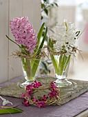 Hyacinthus (Hyazinthen) in kleinen Gläsern, Kränze aus Stroh
