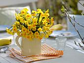 Narcissus 'Soleil d'Or' (Tazett - Narzissen) im Krug