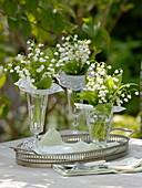 Convallaria majalis (Maiglöckchen) mit Papiermanschetten in Gläsern