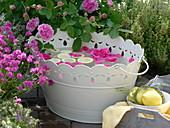 weiße Metallwanne mit Rosenblüten und Zitronenscheiben für ein Fußbad