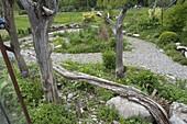 Naturgarten mit toten Bäumen als Gartenkunst
