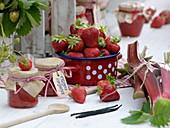Frisch geerntete Erdbeeren (Fragaria ananassa) und Rhabarber (Rheum)