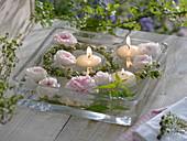 Rosenblüten und Kräuterkranz im Wasser
