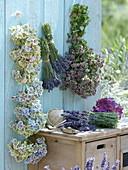 Blüten von Hydrangea (Hortensie), Lavendel (Lavandula), Oregano
