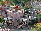 Tischdeko mit roten Blüten und Beeren