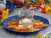 Zum trocknen geerntete Blütenblätter von Calendula (Ringelblumen)