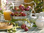 Äpfel (Malus) in Blechgefäßen, Spartina (Goldleistengras) als Schleife