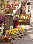 Herbstliche Terrasse mit Früchten