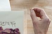 Einladungs-Karte mit getrockneten Rosen-Blütenblättern 4/5