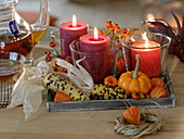 Kerzen in Gläsern auf Holztablett, dekoriert mit buntem Mais (Zea)