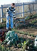 Im Herbst Kompost im Bauerngarten ausbringen