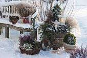 Winterliches Terrassen - Arrangement