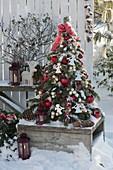 Kleiner Tannenbaum aus Abies nordmanniana (Nordmanntanne) gebunden, dekoriert