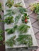 Zweige von verschiedenen Gehölzen für die Weihnachts- und Winter-Floristik