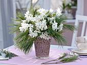 Duftender Winterstrauß aus Narcissus 'Ziva' (Tazetten), Pinus (Kiefer)