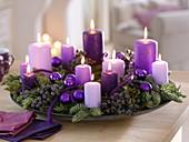 Schale mit violetten Kerzen, Phoenix (Schwarzen Datteln), Abies nobilis
