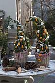 Aus Koniferengrün gesteckte Bäumchen, dekoriert mit Kumquat-Früchten