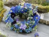 Blauer Frühlingskranz aus Muscari (Traubenhyazinthen), Anemone blanda