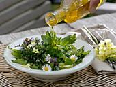 Salat mit Wildkräutern: Bellis (Gänseblümchen), Primula (Schlüsselblume)
