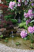 Kleiner Teich im asiatischen Stil mit Buddha-Figur, Trockenmauer und Wasserfall, Rhododendron (Alpenrose), Acer palmatum 'Atropurpureum' (Fächerahorn), Wand bewachsen mit Hedera (Efeu)