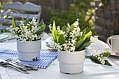 Convallaria majalis (Maiglöckchen) in emaillierten Bechern