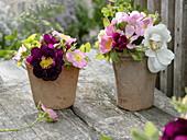 Kleine Sträuße aus Rosa rubiginosa, semiplena und 'Tuscany'