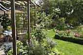 Blick von der Terrasse in den blühenden Garten mit Rosa