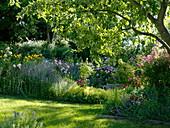Naturgarten mit Rosen und Stauden