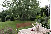 Blick vom Sitzplatz auf großen Süßkirschenbaum (Prunus avium)