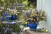Ländlicher Strauß aus Centaurea (Kornblumen), Kamille (Matricaria