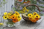 Calendula (Ringelblumen), Borretsch (Borago), Dill (Anethum), Kamille
