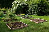 Gemüsegarten mit Quadrat - Beeten