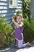 Mädchen erntet Möhren, Karotten (Daucus carota) aus Terracotta - Kübel