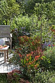 Terrassenbeet mit Birnbaum (Pyrus), Hypericum (Johanniskraut), Helenium