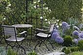 Kleine Terrasse mit Sitzgruppe und Laube vor Hainbuchen-Hecke,