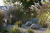 Kiesgarten mit Gräsern eingefaßt mit Kalksteinen