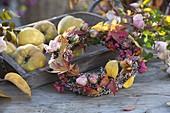 Herbstkranz mit Herbstlaub, Rosa (Rosen), Euonymus (Pfaffenhütchen)
