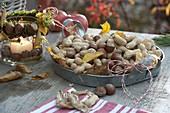 Zink-Tablett gefüllt mit Haselnüssen (Corylus) und Erdnüssen