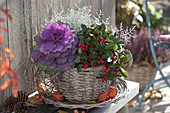 Korbtasse herbstlich bepflanzt mit Gaultheria procumbens