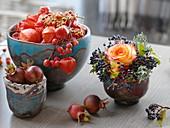 Physalis (Lampions), Rosa (Rose, Hagebutten), Malus (Zieräpfel), Viburnum